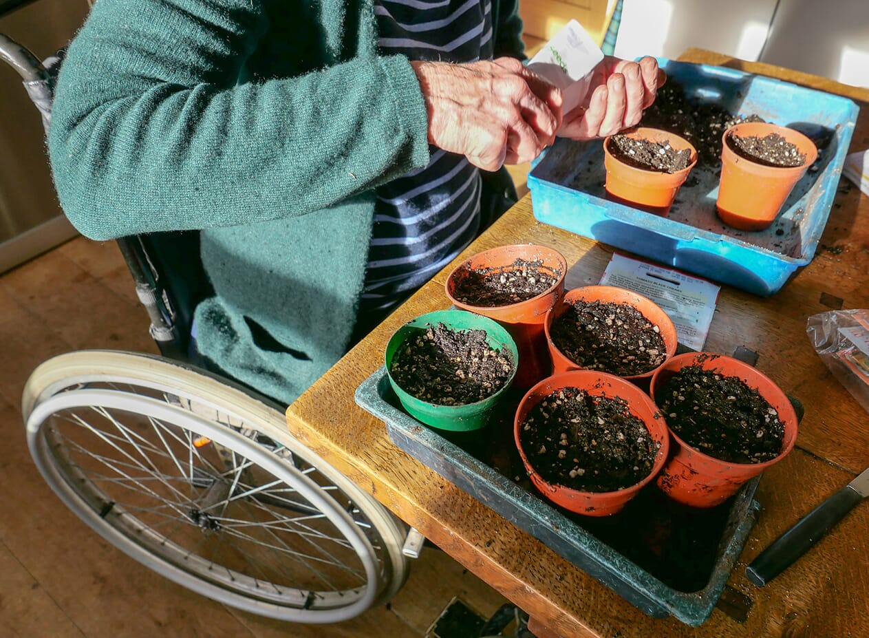 woman in wheelchair planting seeds in plant pots